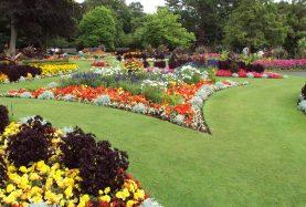 Flower_garden,_Botanic_Gardens,_Churchtown_2
